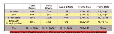 VideoFormat4
